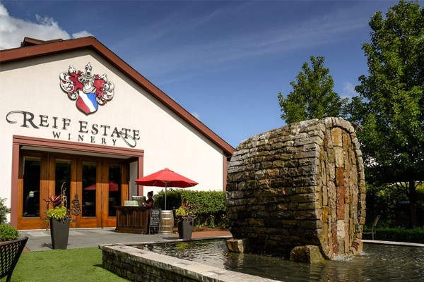 REIF ESTATE WINERY photo